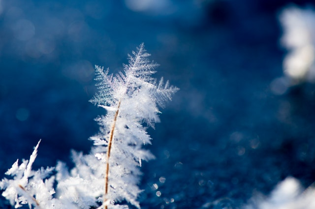 námraza, sněhové vločky